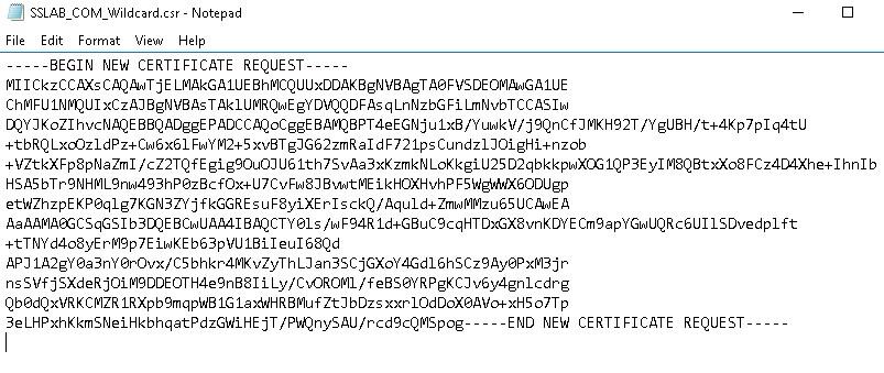 Netscaler 12 – Wild Card Certificate – CSR and Installation steps ...